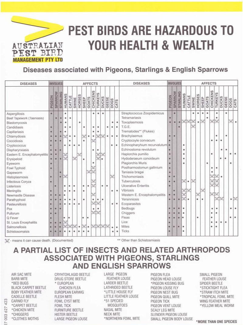 Disease Information Sheet